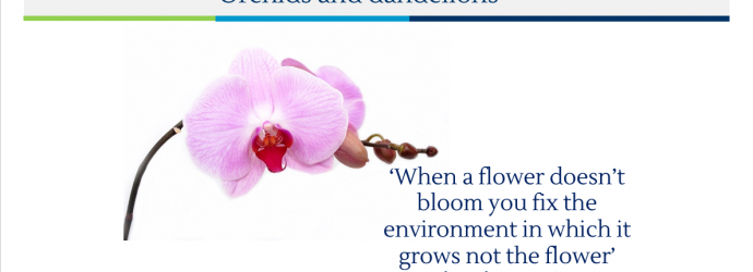 A slide from the presentation reading 'When a flower doesn't bloom you fix the environment in which it grows not the flower'