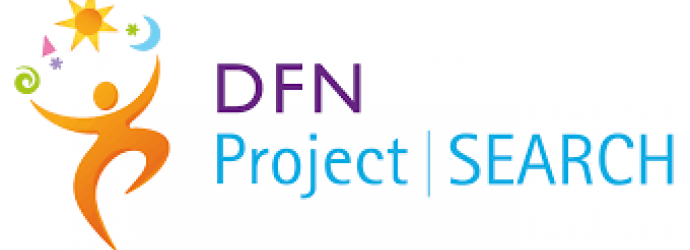 DFN project search logo