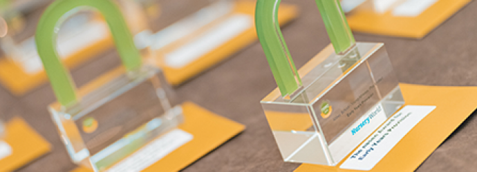 close up image of nasen awards on a table
