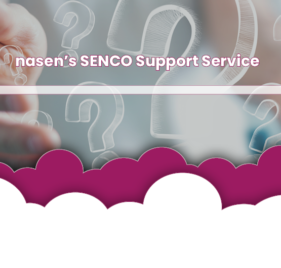 Header image for SENCO Support Service